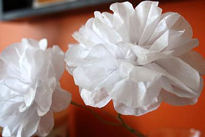 flowers_close