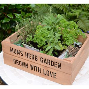 Personalised Medium Crate With Herb Seeds
