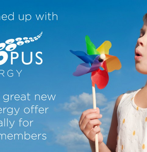KidStart Energy Switching with Octopus Partnership