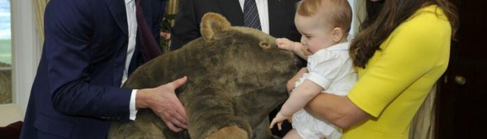 Prince_George_of_Cambridge_with_wombat_plush_toy_(crop)